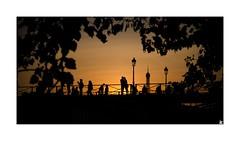 Pont des Arts (Isabelle) Tags: paris pontdesarts coucherdesoleil iledefrance france sunset panorama silhouettes toureffeil
