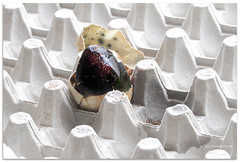 Pee  - 6952 (willfire) Tags: willfire singapore century egg tray preservedegg