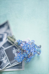 Memories (borealnz) Tags: forgetmenot blue flowers spring remember memories photos old