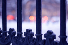 Looking for bokeh, Berzelii Park (Paulina_77) Tags: park winter light white snow cars ice car metal architecture fence lens 50mm prime lights nikon bars europe soft mood moody dof purple sweden stockholm bokeh snowy decorative pastel softness dream violet headlights pastels romantic fixed dreamy icy nikkor delicate wonderland length fragile daydream depth tender tenderness gentle delicacy subtle winterscape 50mm18 whiteness wintry focal hff szwecja d90 fragility nikkor50mm18 berzeliipark sverie nikond90 berzelii atmnosphere 50mm18g happyfencefriday atmispheric pola77