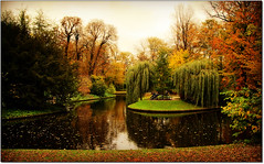 Vision... (rogilde - roberto la forgia) Tags: love water copenhagen relax gold golden peace meeting natura danish pace frederiksberg acqua autunno incontri inlove panchina panchine danimarca naiade salici ninfe mitologiagreca rogilde incontaminata robertolaforgia