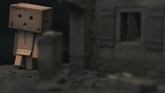 Danbo ruins 5 (Alden M) Tags: japan amazon cardboard danbo boxrobot yotsubakoiwai danboard cardbo danboru danbomini canon28mm18lens bmpcc bmpccsuper16mmsensor
