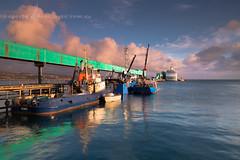 Arrival (Images by Ann Clarke) Tags: sunrise wharf cruiseship portlincoln eyrepeninsula pocruiseship feb2015