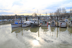 2015 Feb 22 Ladner Harbour Park 2669 (digitalmarbles) Tags: trees canada reflection water docks boats bc waterfront view britishcolumbia scenic lanscape ladner lowermainland