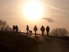 Wanderung mit Hund (ustrassmann) Tags: silhouette sonnenuntergang hund sonne schatten gegenlicht spaziergang wanderung