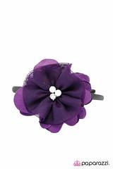 2818_2Image2(Purple17-12)-03