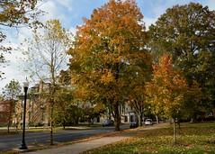 Marietta College Fall Colors (thoeflich) Tags: fallcolors autumnleaves autumncolors mariettacollege falllandscape