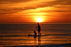 Best friends               (Explore-Jan 11th) (outdoorpict) Tags: sunset dog man water mexico surf gulf smooth golds oranges yellows siestakey paddleboard