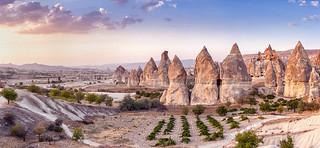 Dwelling | Cappadocia (Kapadokya), Turkey