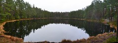 A panorama from the southern end of Lake Sultingstrsk (Pirttimki recreation area, Espoo, 20111127) (RainoL) Tags: november autumn panorama lake reflection forest espoo finland geotagged u fin bog stitched nuuksio uusimaa nyland 2011 esbo pirttimki 201111 20111127 lakesofnuuksio geo:lat=6027110500 geo:lon=2462221100