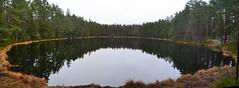 A panorama from the southern end of Lake Sultingsträsk (Pirttimäki recreation area, Espoo, 20111127) (RainoL) Tags: november autumn panorama lake reflection forest espoo finland geotagged u fin bog stitched nuuksio uusimaa nyland 2011 esbo pirttimäki 201111 20111127 lakesofnuuksio geo:lat=6027110500 geo:lon=2462221100