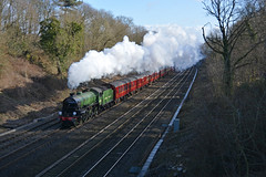 St David's Day express (DaveStubbings) Tags: cathedrals steam dreams cutting express berkshire steamengine mayflower steamtrain b1 sonning steamlocomotive 61306 sonningcutting cathedraslexpress