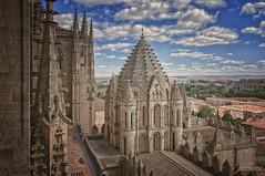 Privilegio (Argos351Photo) Tags: españa art spain arte y catedral leon salamanca juanjo zamora castilla llanura meseta