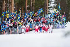 Skiathlon - World Ski Championships 2015 Falun (olleeriksson) Tags: world ladies ski sweden crosscountry sverige championships dalarna falun skidor wsc 2015 lugnet damer skiathlon skidvm falun2015