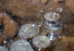Air Bubbles in Ice (dglover6276) Tags: winter ice maryland bubbles patapsco frozenintime airbubbles patapscostatepark bubblesinice