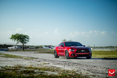 """2015 Ford Mustang GT 50th Anniversary Pack   20"""" Vossen CVT Gloss Graphite -  Vossen Wheels 2015 - 1044 (VossenWheels) Tags: ford american mustang gt lowered stance mustanggt 2015 cvt vossen fordmustanggt americanmuscle fordwheels vossenwheels fordmustanggt350 fordmustanggt500 gt500wheels stancenation mustanggtwheels fordmustangwheels shelbywheels loweredlifestyle teamvossen cobrawheels 2015fordmustanggt glossgraphite glossgraphitecvt mustanggt350wheels fordshelbymustangwheels fordmustangcobrawheels fordshelbymustangaftermarketwheels fordmustangcobraaftermarketwheels mustangcobrawheels shelbymustangwheels fordaftermarketwheels fordmustanggtwheels fordmustanggtaftermarketwheels fordmustanggt350wheels fordmustanggt500wheels gt350wheels gt350aftermarketwheels gt500aftermarketwheels mustanggt350aftermarketwheels mustanggt500wheels mustanggt500aftermarketwheels"""