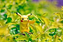 Pikachu amiibo (FaruSantos) Tags: toys nintendo pikachu pokémon miniaturas amiibo