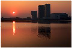 Dutch light: springtime (H. Bos) Tags: light season evening licht spring avond polder lente springtime almere dutchlight seizoen flevopolder hollandslicht weerwater