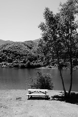Alone (lauratintori) Tags: trees blackandwhite white mountain lake black mountains tree nature relax landscape photography photo nikon alone gray pointofview pace ph sunnyday nocolor naturephoto d5100 nikond5100 lauratintoriph