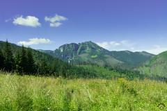 Kominiarski Wierch z Przysłopu Miętusiego (czargor) Tags: giewont outdoor mountains mountainside inthemountain nature landscape