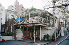 -28 (UME2nd) Tags: fujifilm japan natura classica