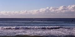 The Surfers [Nikon F5 Film] (Aviator195) Tags: kodak kodakfilm kodakektar kodakektar100 ektar ektar100 ektarfilm film filmphotography filmisnotdead filmphotos filmscan filmphoto nikon nikonfilm nikonf5 f5 epson epsonperfectionv550 epsonv550 v550 highquality highqualityfilmscan surf surfing surfers wave waves ocean beach manly manlybeach queenscliff queenscliffbeach northernbeaches australia surfboard surflife surfculture
