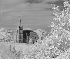 HFF!! The kirkside fence. (Elisafox22) Tags: elisafox22 nikon d90 fencefriday kirk church spire building fence tree trees leaves road infrared wooden fenceposts sky clouds fencedfriday outdoors shadows bw mono blackandwhite greyscale landscape aberdeenshire scotland monotone elisaliddell©2016 auchterless 720nm