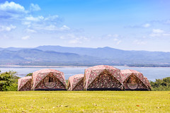 Tourist tents in camp among meadow on the mountain. Shallow of focus (Gos Eye View) Tags: srinagarindra srinakarin activity adventure area autumn backpacking beautiful blue bright camp campground campsite cape climb dam field forest grass green hike hiking home house landscape leaves monson mountain nature outdoors park peak pleasure red rest sport summer sun tent thailand tourism town travel tree trekking vacations western wild wood kanchanaburi