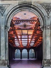 Central Park, NYC (photosbyrabi) Tags: nyc newyork ny centralpark bethesdaterrace travel travelphotography