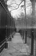 Burial Grounds (Superfluous Man) Tags: canon7rangefinder canon50mmf18 kodaktmax100 35mm monticello