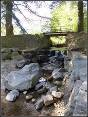 Diffrence de tailles... (Malys_) Tags: eau pierre caillou pont bois rivire arbre nature