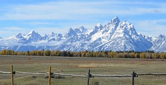 325e2x  Sunny Teton Range (jjjj56cp) Tags: tetons grandtetonnationalpark nationalpark mountains mountainrange tetonrange snowy snowymountains autumn peaks snowypeaks jennypansing october wy woming fence grasslands treeline aspens evergreens trees clouds highlightclouds