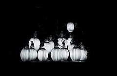 The lights of the Garnier Opera - Paris (FUMIGRAPHIK_Photographist) Tags: ifttt 500px monochrome dark art group light opera classicdancer paris blackandwhite artwork indoor