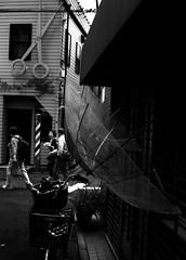 (framework) (Dinasty_Oomae) Tags: minolta  minoltina  minoltinas s   tokyo  taitoku  yanaka   monochrome outdoor street bw blackwhite blackandwhite  umbrella   arakawaku nishinippori  barber