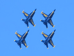 Blue Angels going vertical (Pest15) Tags: blueangels fleetweeksf2016 airshow sanfrancisco landsend outdoorphotography military aircraft planes jets fa18hornets usnavy