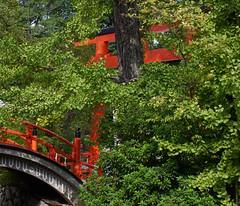 Hidden in the woods (Tim Ravenscroft) Tags: torii bridge foliage trees shimogamo shrine shinto kyoto japan