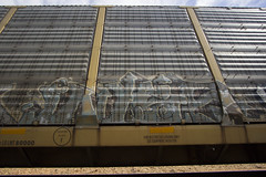 Wyse (Revise_D) Tags: graffiti trains graff dts tagging d30 freight revised wh fr8 wyse bsgk a2m benching fr8heaven fr8aholics fr8bench benchingsteelgiants freightlyfe