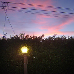 When the streetlights go on (maralina!) Tags: california light sunset clouds la losangeles streetlight sundown dusk streetlamp lumire socal southerncalifornia nuages mystreet myneighborhood crepuscule hollywoodhills magicmoment
