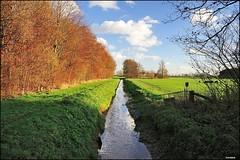 Doetinchem; Eldrikse kwelsloot with in the background Barlham (Fred van Daalen) Tags: thenetherlands achterhoek gelderland doetinchem liemers oudeijssel eldrik barlham heggenveld