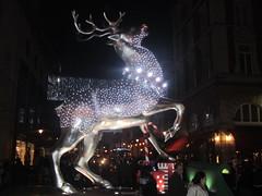 Silver reindeer - Covent Garden (Londrina92) Tags: christmas london night dark festive reindeer lights christmaslights nightshoot coventgarden londra christmassy londonatnight renna decorazioninatalizie londonafterdark silverreindeer illuminazioninatalizie