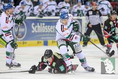 "DEL15 Düsseldorfer EG vs. Augsburg Panthers 28.12.2014 008.jpg • <a style=""font-size:0.8em;"" href=""http://www.flickr.com/photos/64442770@N03/16008717610/"" target=""_blank"">View on Flickr</a>"