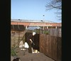 Beryl016 (thecablefamily) Tags: 1970s sparkbrook