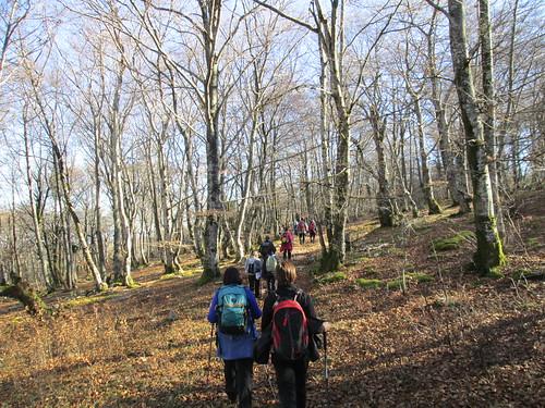 monte-santiago-senderismo-sermar-valladolid-ruta365 (48)