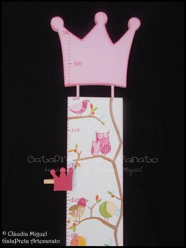 """Placa de porta e régua crescimento """"Pink Birds&Owls"""""""