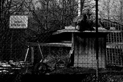 ... (FOTO.Michaela) Tags: winter white black building dogs by warning dangerous nikon republic czech stop horror cz cr ostrava fabruary guarded d3100