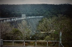 Woronora Dam (Wawa Duane) Tags: world old woman baby ontario canada hot get tree beer girl sex metal digital out naked nude monkey oak women eagle boobs pussy bald drinking australia tags dirty chick your willow numbers shave there bunch these sits wawa perverts detecting poontang