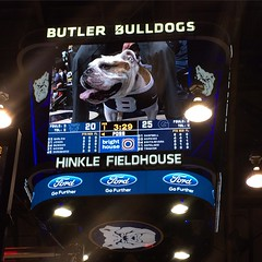 "Big Dawg. Big Screen. #GoDawgs #Get2Hinkle • <a style=""font-size:0.8em;"" href=""http://www.flickr.com/photos/73758397@N07/16522477640/"" target=""_blank"">View on Flickr</a>"