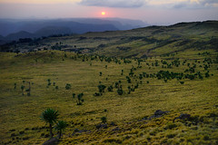 Sunset over the Simiens (departing(YYZ)) Tags: africa travel sunset mountains green zeiss wonder landscape outside nationalpark moody natural sony relaxing peaceful 55mm verdant fe ethiopia alpha setting barren tranquil a7 rolling highaltitude simienmountains semian sonnartfe55mmf18zalens