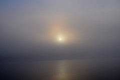 Schluchseenebel 3 (Ulrike Schumann) Tags: sun lake fog see nebel schwarzwald blackforest schluchsee