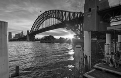 Fishing at the Harbour (drivingback) Tags: sunset blackandwhite bw sydneyharbourbridge sigma1020mmf456 humanelement pentaxk30